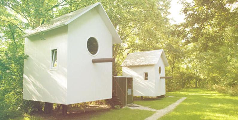 De droom van elk kind: slapen in een vogelhuis