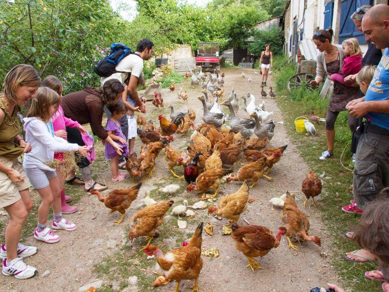 camping agriturismo boerderij