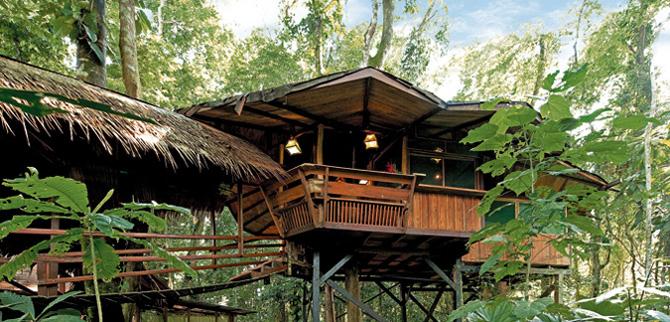 treehouse hotel costa rica
