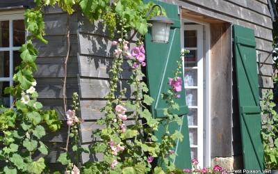 Lief vakantiehuisje in Bretagne