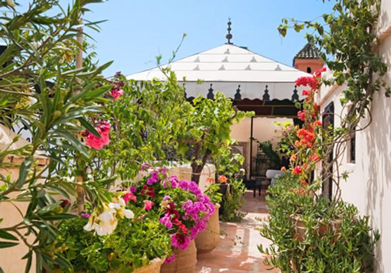 Magie in Marrakech