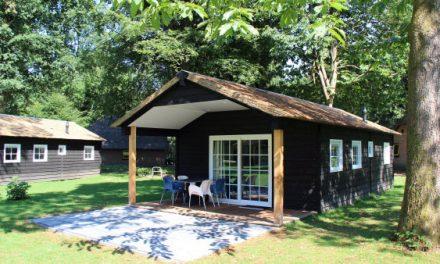Vakantiehuisje in het bos veluwe for Vakantiehuisje bos