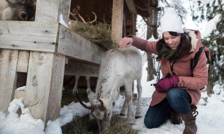 Travelvideo: kerstmis in Zuid-Tirol